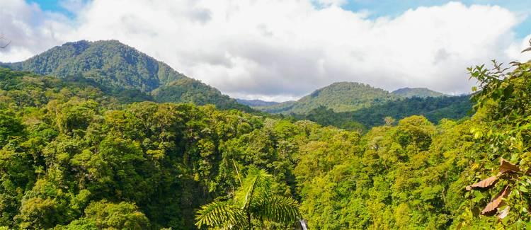 provincia alajuela costa rica