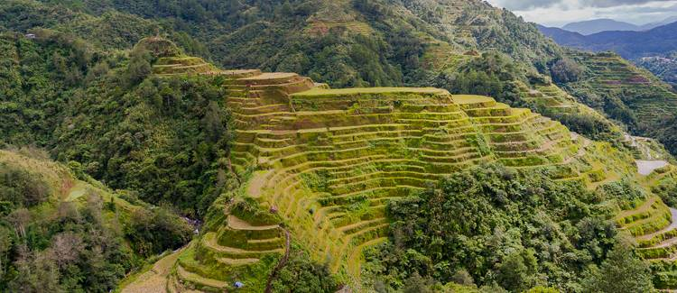 terasele de orez banaue filipine