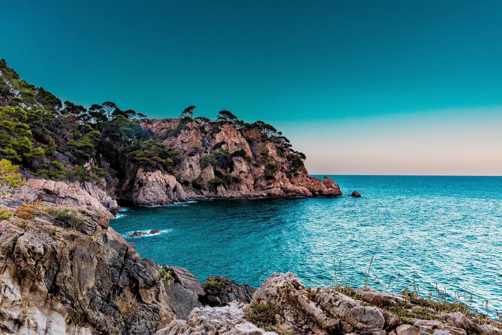 Detox Marbella