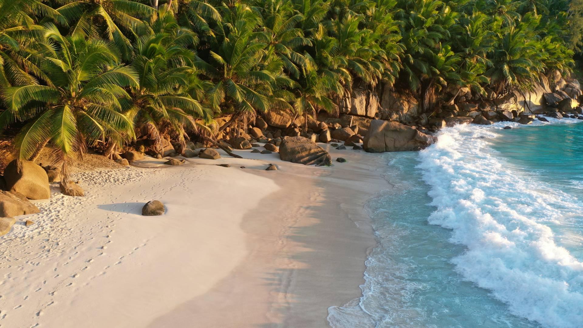 Charter Seychelles
